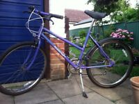 Girl's/Lady's Raleigh Calypso 5 Speed Hard Tail Mountain Bike Perfect Condition