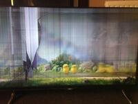 Faulty 50 inch TV x 2 Hitachi and Bush