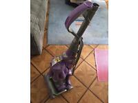 Dyson vacuum for pets