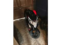 Lexemoto echo 50cc Moped