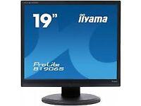 "iiYama ProLite B1906S 19"" Flat Screen Monitor VGA & DVI Port"
