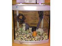 Aqua 0ne 320 Tropical Set Up