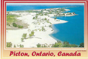701 Old Collectible Post Cards from a  Picton Estate Sale
