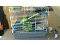 lovely friendly Gerbil and cage for sale
