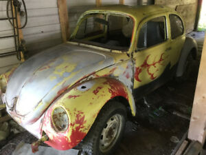 Volks Beetle 1974 to restore