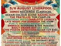 2 X Saturday Adult Tickets for Hope & Glory Festival in Liverpool