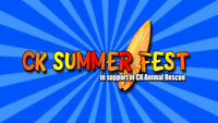 Vendors Needed for Summer Fest Chatham