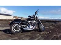 Immaculate Harley Davidson XL1200C Custom Sportster