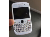 Blackberry curve - white