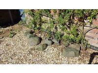 Ornamental Stones / Rocks - Grey