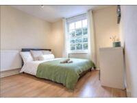 One kingsize room for rent
