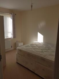 Double room to rent £500 pcm (all bills included)