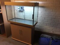 Large Amazon Aquarium with Stand, filter (just over a year old), lights and heater