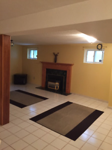 1 Bedroom Basement Apartment in Richmond Hill