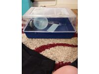 A blue and see tnrough hamster cage