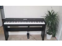 Korg Digital Arranger Piano Havian 30 immaculate condition with original Boxes and pedal