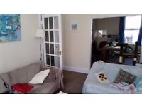 Double Room In 3 Bed House - With a Cat (And 1 Other Person)