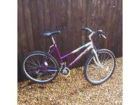 ( C )Twiliaht Cascade Ladies Bike