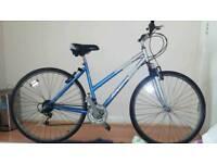 Riverdale adult mountain bike. 18 speed.