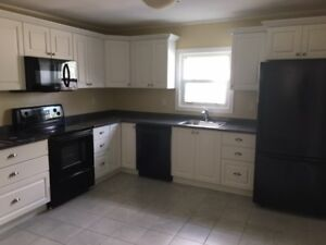 Newly renovated 2 bedroom in walking distance from Downtown
