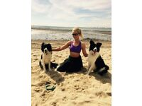 Dog Walking Services **FREE** in Highcliffe