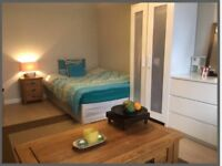 SHORT TERM ROOM Available NoW - End of August!