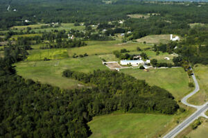A Nice Horse Farm for sale in Quinte West area