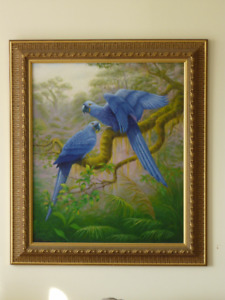 "Oil Painting 26""x 22"" of Hyacinth Macaws"