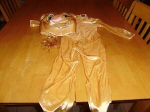 LION KING COSTUME SIZE 3