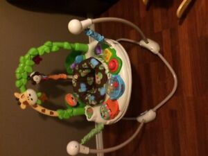 Fisher Price Go wild Jumperoo AND baby car seat per below.
