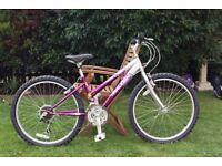 Raleigh Krush girl's mountain bike, 24 inch