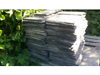 460+ Reclaimed Welsh Roofing Slates (10 x 14 and 12 x 14)