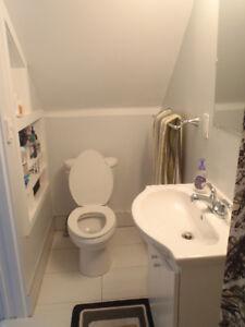 Bathroom Sinks Kijiji Calgary plumber sink | services in calgary | kijiji classifieds