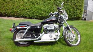 2004 Custom Harley Davidson Sportster 883