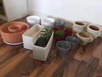 Lovely indoor pots!!!