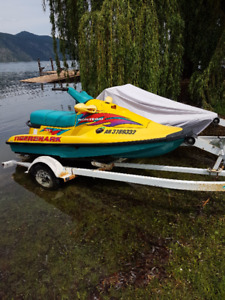 Arctic Cat Tigershark 650 Seadoo REDUCED