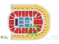 CELINE DION TICKETS FOR THIS SUNDAY IN lONDON