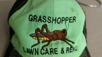 Grasshopper Painting. Renovation