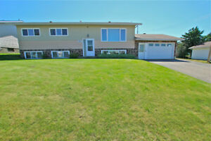 BI-LEVEL IN BOYLE, AB GREAT VALUE FOR A BIG HOME! ONLY $245,000