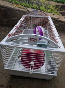 Small animal cage and equipment