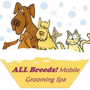 Need a Certified Mobile Dog or Cat Groomer?