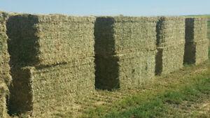 custom baling large 4x4 square bales