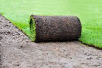 SOD INSTALL END OF MONTH SALE CALL 587-586-2443