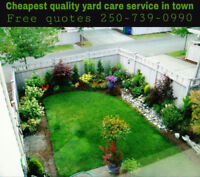 Cheapest high quality yard/garden service in town free quotes