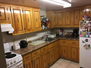 Looking for a roommate!!!