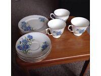 Queen Anne Flower tea set