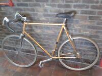 FULLY SERVICED Men Women Large DAWES Vintage Road Racing Bike VERY FAST