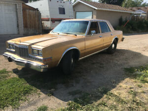 Looking for a Ex-cop car 1980-1989 Dodge Diplomat/Caravelle