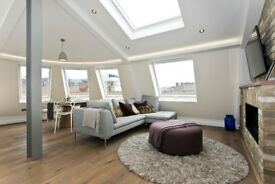 Penthouse apartment with stunning private terrace walking distance to the City E1
