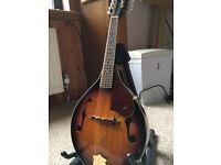 Fender mandolin with hard case.